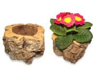 Blumentop Kork kaufen