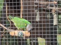 Sitzbrett selber bauen mit Befestigungs-Scharauben aus Edelstahl