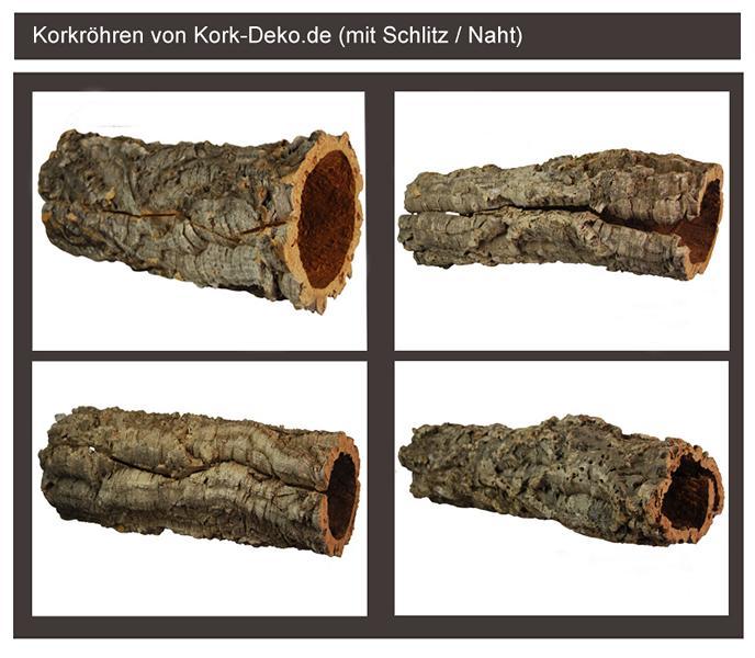 Korkröhre mit Schlitz / Naht vom Schälvorgang (Axteinschlag)