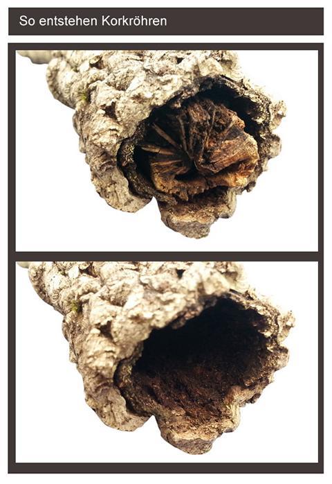 so entstehen Kork-Röhren