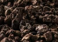 Backkork, Granulat aus Schwarzkork kaufen