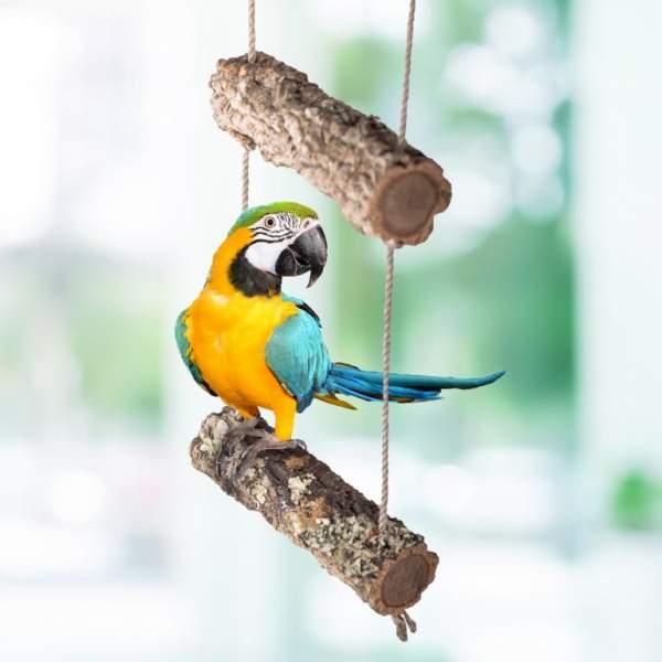 Vogel-Schaukel aus Kork-Ast