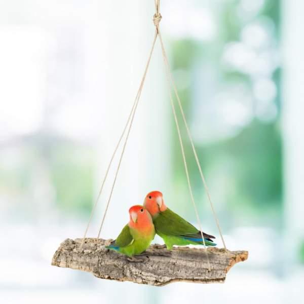 Schaukel aus Kork-Rinde für Vögel