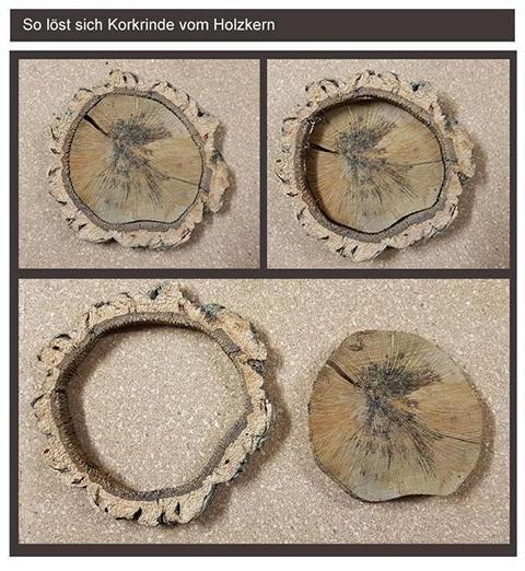 so löst sich Korkrinde vom Holz